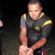 Sea turtle nesting at South Sea Island