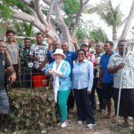 Navini host Seaweed Compost Workshop