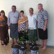 MES reforestation initiative
